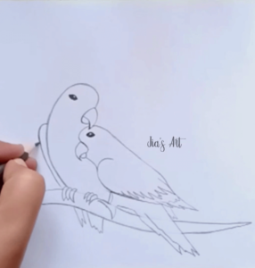 Parrot Drawing Step 1