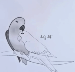 Parrot Drawing Step 2
