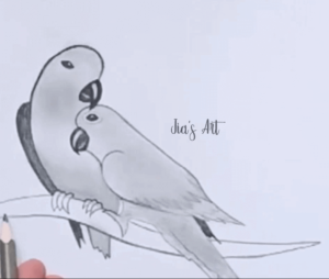 Parrot Drawing Step 3