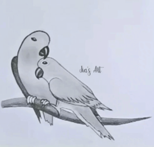 Parrot Drawing Step 4