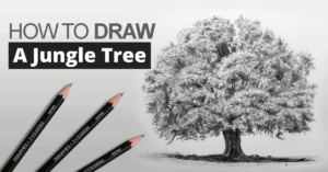 how-to-draw-a-jungle-tree
