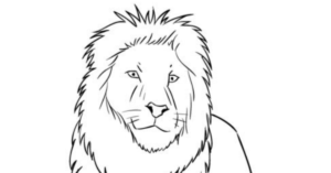 lion-face-drawing