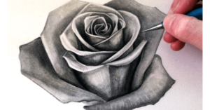 How-To-Draw-Realistic-Rose-Petals