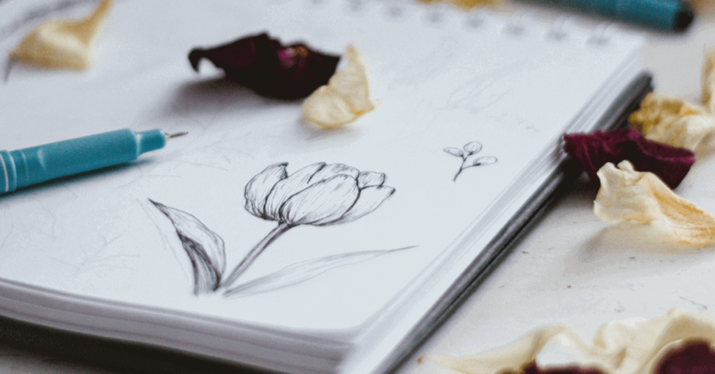 draw-a-rose-with-pencil